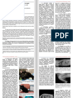 Caso Clinico Hipotiroidismo Congenito 2015 4