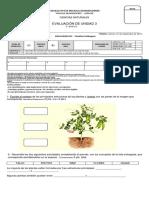 Evaluación ciencias unidad plantas.docx