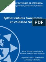 pfc5255.pdf