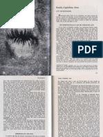 253435514-Hocquenghem-Guy-Family-Capitalism-Anus.pdf