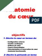 AnatomieduCoeur