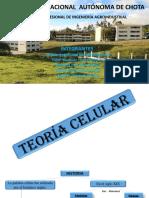 Exposicion de Biologia (Teoria Célular)