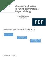 Keanekaragaman Spesies Tanaman Puring di Universitas Negeri Malang.pptx