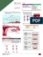 [OB3b] Multifetal Gestation (Olivar) - Bernabe