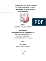 METODLOGI VPH Corregido Landauro 1