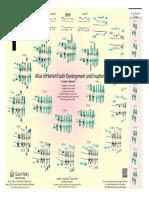 atlas_of_tooth_development_in_English.pdf