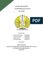 365939598-urin-fix-docx.pdf
