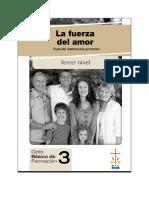 Guia del Matrimonio Promotor TERCER NIVEL.pdf