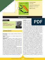 195-el-camino-de-la-hormiga.pdf