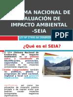 SEIA sistema nacional de impacto ambiental