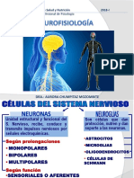 Neurofisiología - b