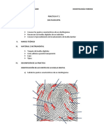PRACTICA N 2 Odontologia Forense