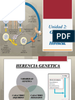Genetica y Herencia - Unidad 02