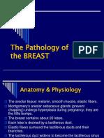 The Pathology of Breast 14