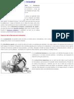 Causas de La Revolucion Industrial _ Historia Universal