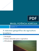 Brasil Potencia Agrícola