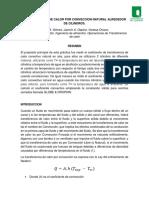 Informe 2 CONVECCION Natural (1)