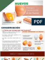 Huevos y su conservación