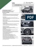 A_250_AMG_Line.pdf