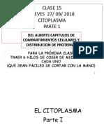 CLASE 15 CITOPLASMA  1 ALU B Y N  PARA FOTOCOPIAR .pdf