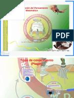 11 Construccion Del Pensamiento Matematico PDF - Prezi