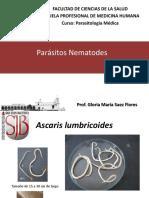 Ascaris, Enterobius, Trichuris,Ancylostoma