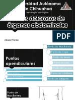 puntosdolorosos-150325055442-conversion-gate01.pdf