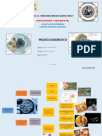 PRODUCTO-ACADEMICO-BIOLOGIA.pdf