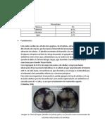 Almidón y Gelatina.docx