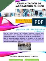 Organizacion de Laboratorio Clínico