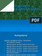 6. Sistem Saraf Tepi