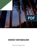 metabolisme_energi-ranm[1]