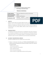 TdR - Elaboracion EBI puente No Evaluado ancash lima.docx