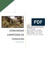 DESCRIPCION-DE-LA-COMUNIDAD-DE-COCHANGARA (1).docx