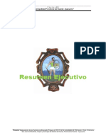 1. Resumen Ejecutivo Primarias