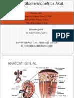 Referat Glomerulonefritis Akut Dr. Toni