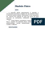 (Exp I)Pêndulo Físico