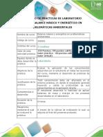 Protocolo Para Balance Masico y Energetico Nuevo