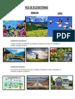 Tipos de Ecosistema Elementos Sociales y Naturale