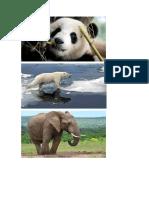 animales para imprimir.docx
