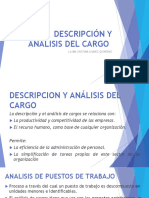 descripcion y analisis de cargos