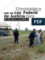 Vision Criminologica de La Ley Federal Adolecentes