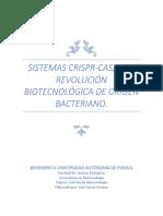 ¿Qué son los sitemas CRISPR?