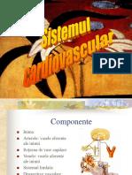 Histologie-Sistem cardiovascular