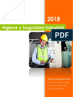 Informe de Sistema de Higiene y Seguridad Industrial