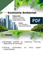 Economía Ambiental - exposicion