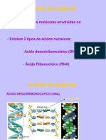 Estrutura DNA RNA