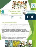 preparacionesherbolarias-160510183557