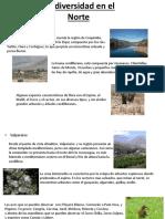 Biodiversidad en El Norte