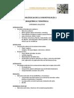 Bases Biológicas de La Odontología Contenido Analitico